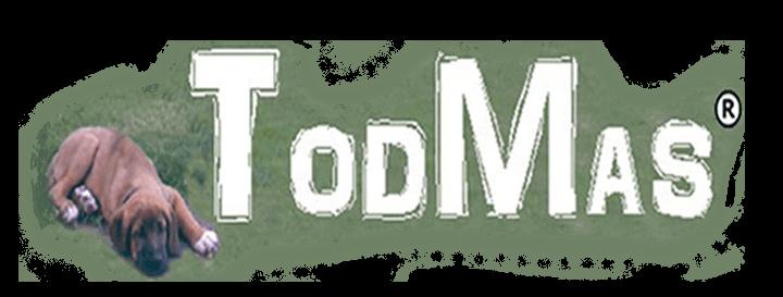 TodMas