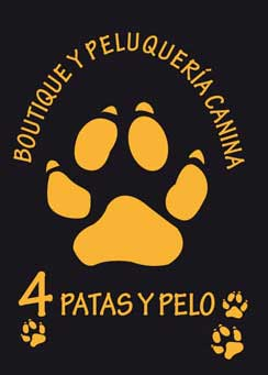 Clinicas Veterinarias Casillas 4 Patas