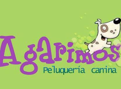 Peluquerias mascotas Coruña Agarimos