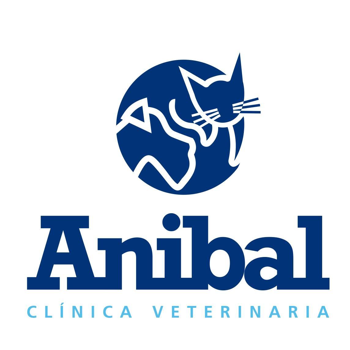Clinicas Veterinarias en Albacete Anibal