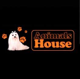 Peluquerias Mascotas Granada Animals House