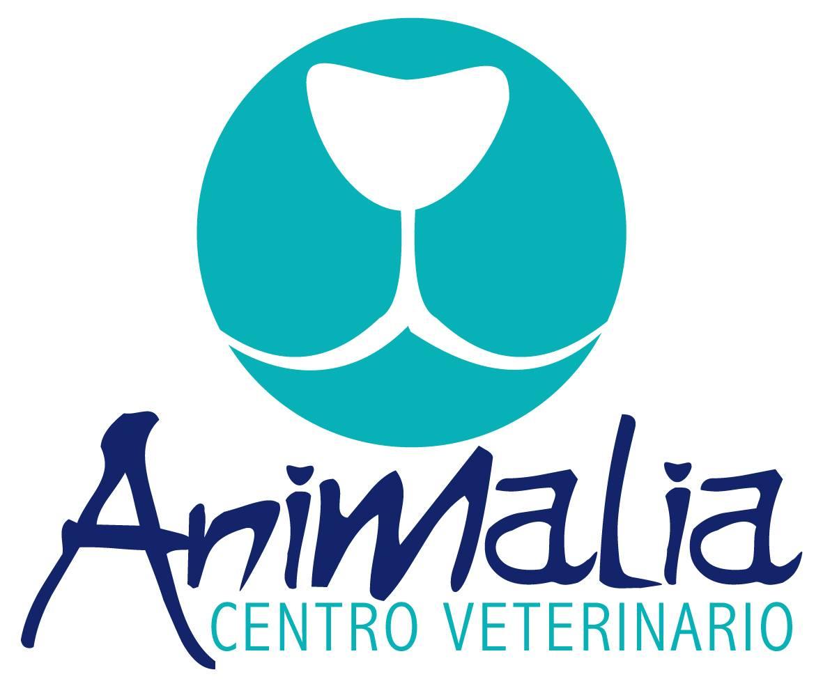 Clinicas Veterinarias en Las Palmas de Gran Canaria Animalia