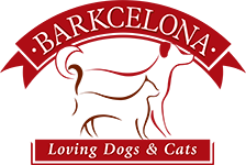 Peluquerias Caninas en Barcelona Barkcelona
