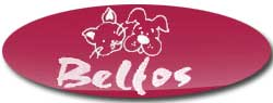 Tiendas Mascotas Valencia Belfos