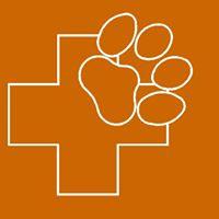 Clinicas veterinarias Valencia Campamento
