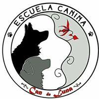 Adiestradores Caninos Badajoz Can De Luna
