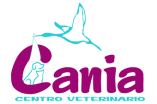 Clinicas Veterinarias en Telde Cania