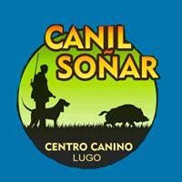 Adiestradores caninos Lugo Canil Soñar