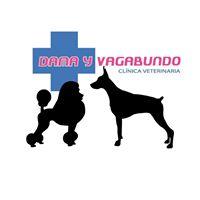 Clinicas Veterinarias Elche Dama y Vagabundo