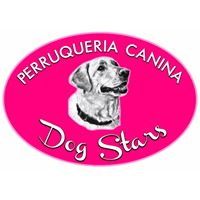 Peluquerias Mascotas Alfafar Dog Stars