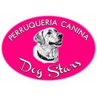 Tiendas Mascotas Alfafar Dog Stars