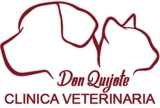 Clinicas Veterinarias en Madrid Don Quijote
