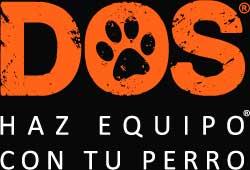 Adiestrador Canino en Ciudad Real Dos