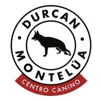 Adiestradores Caninos en El Molar Durcan