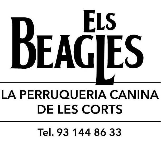 Tiendas Mascotas en Barcelona Els Beagles