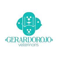 Clinicas Mascotas Valencia Gerardo Rojo