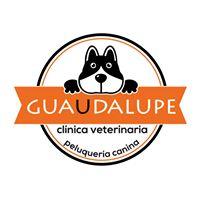 Clinicas Veterinarias Murcia Guaudalupe