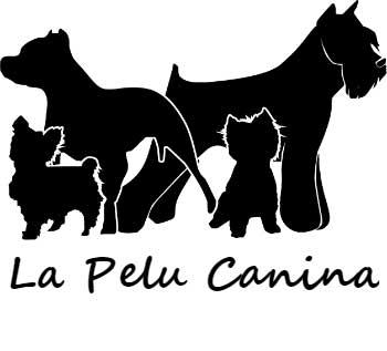 Peluquerias Caninas en Madrid La Pelu Canina