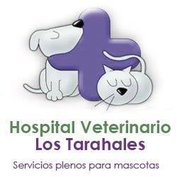 Clinicas Veterinarias en Las Palmas de Gran Canaria Los Tarahales