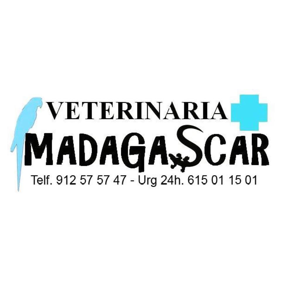 Clinicas Veterinarias en Madrid Madascar