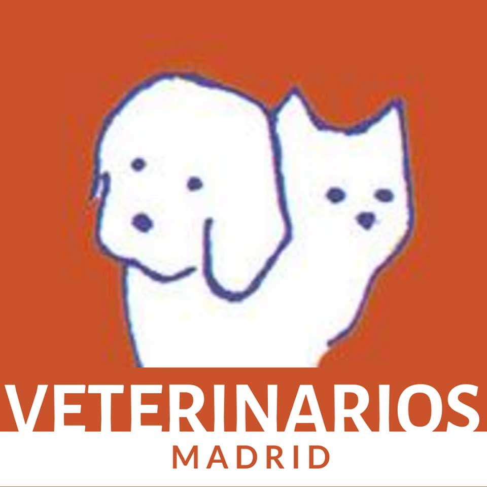 Clinica Veterinaria en Madrid Caramuel