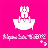 Peluquerias Mascotas Zaragoza Marbore