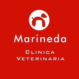 Tiendas mascotas Coruña Marineda
