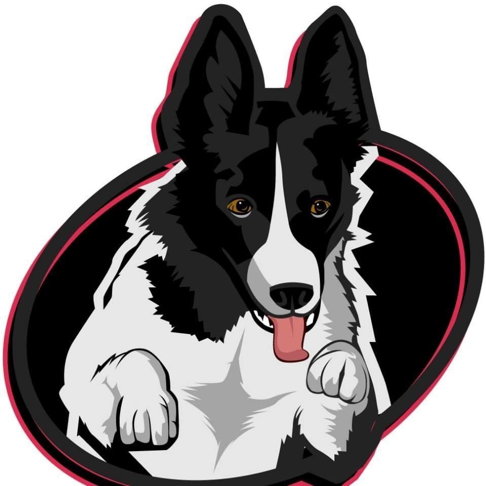 Residencias Caninas en El Molar Mi perro 10