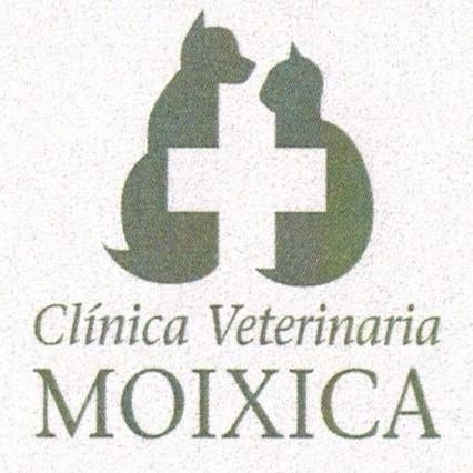 Clinicas Veterinarias en Puerto de Pollensa Moixica