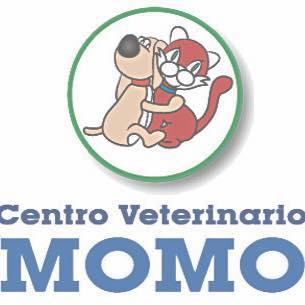Clinicas Veterinarias en Madrid Momo