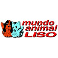 Clinicas Veterinarias Zaragoza Mundo Animal Liso