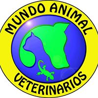 Clinicas Veterinarias Sevilla Mundo Animal