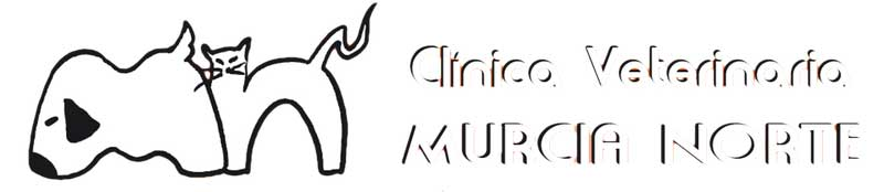 Tiendas Mascotas Murcia Murcia Norte