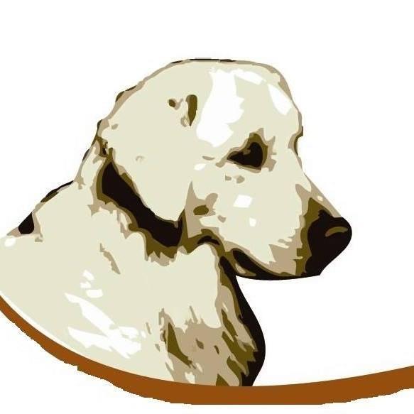 Adiestradores Caninos en Carabaña naydanur