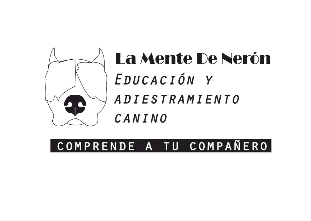 Peluquerias Mascotas Zamora La mente de Nerón