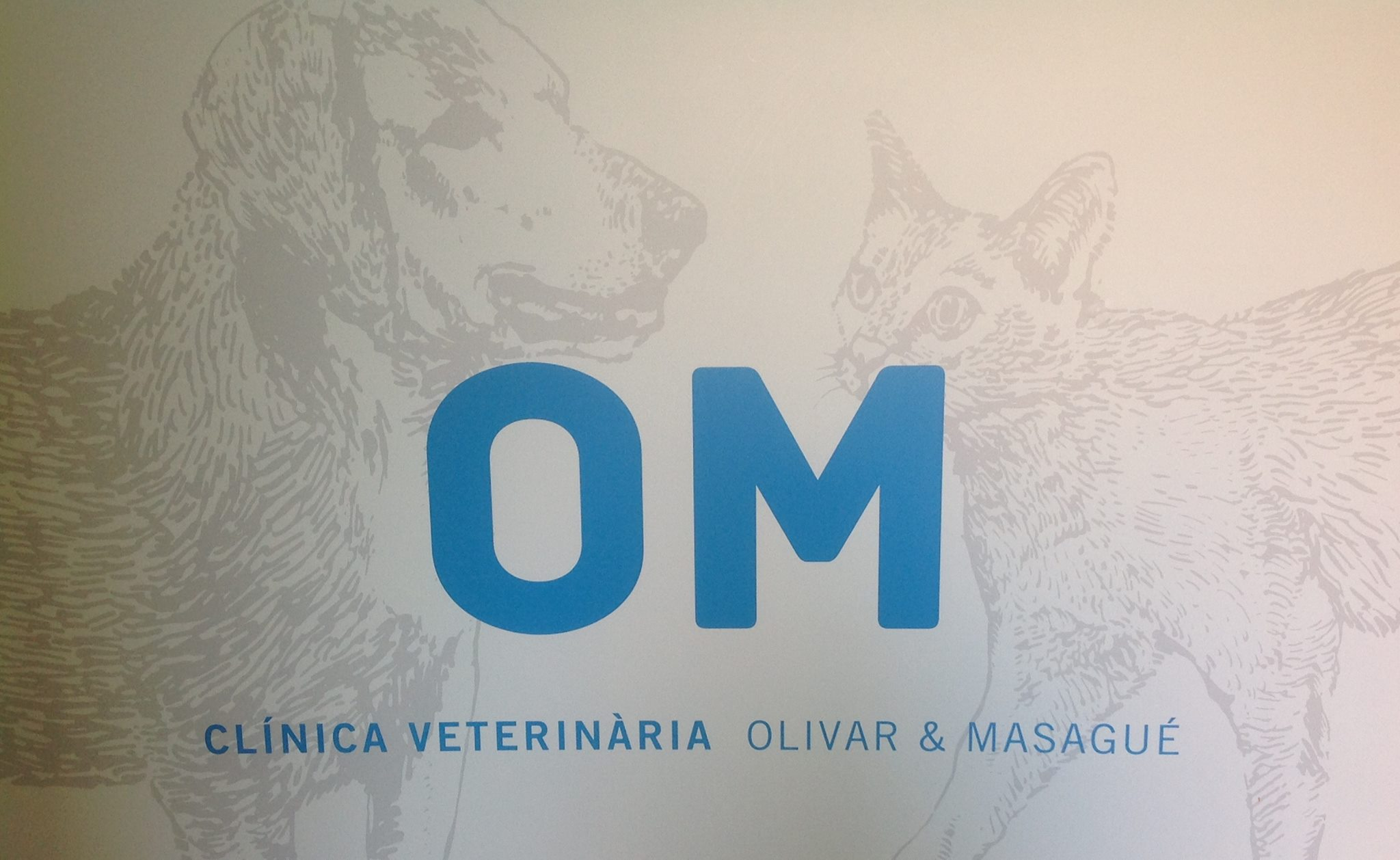 Clinicas Veterinarias en Barcelona OM Veterinària