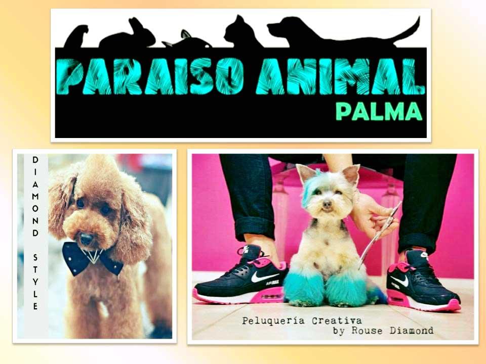 Peluquerias Mascotas en Palma de Mallorca Paraiso Animal