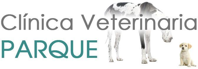 Clinicas Veterinarias en Madrid PArque