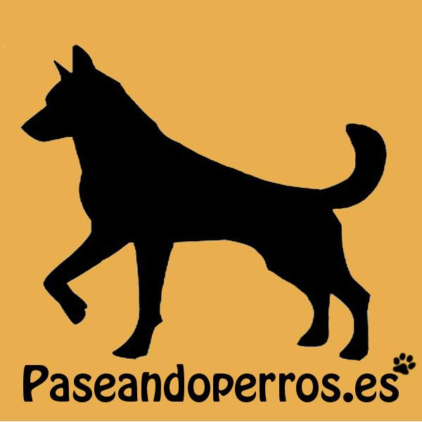 Paseadores Caninos en Getafe Paseandoperros