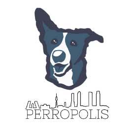 Adiestrador Canino en Madrid Perropolis