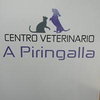 Clínicas veterinarias Lugo A Piringalla
