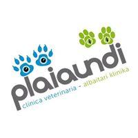 Clinicas Veterinarias Guipuzcoa Plaiaundi