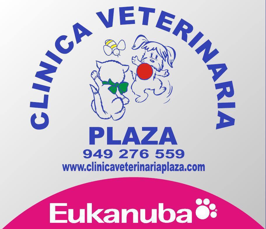 Clinicas Veterinarias en Villanueva de la Torre Plaza