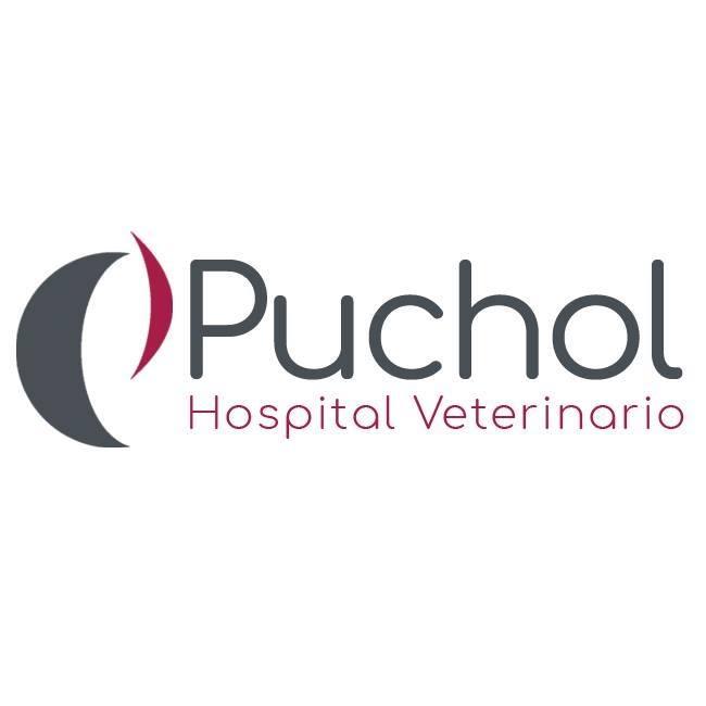 Clinicas Veterinarias en Madrid Puchol
