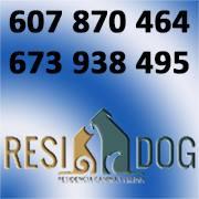 Residencias Mascotas Rafelbunyol Residog
