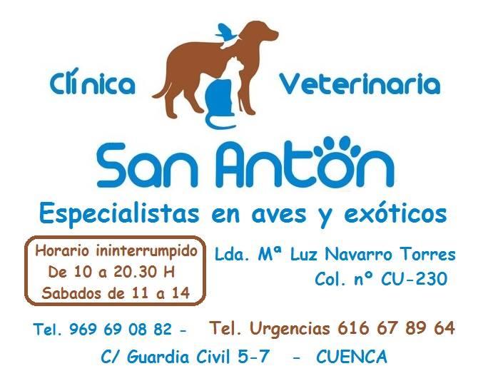 Clinicas Veterinarias en Cuenca San Antón