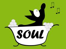 Peluquerias Caninas en Coslada Soul