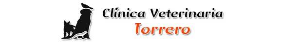 Clinicas Veterinarias Zaragoza Torrero