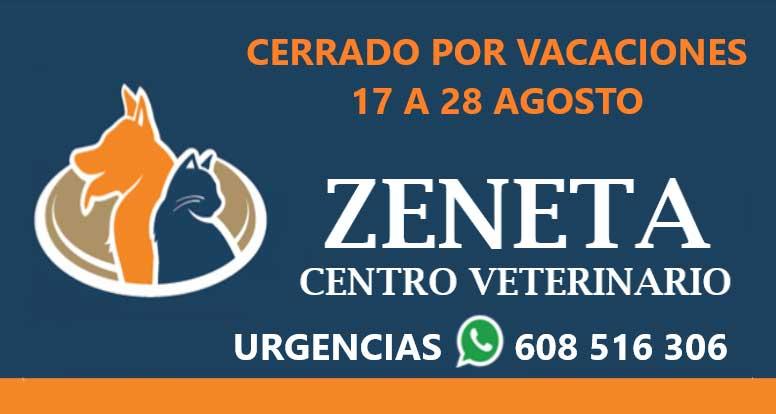 Clínica Veterinaria en Murcia Zeneta