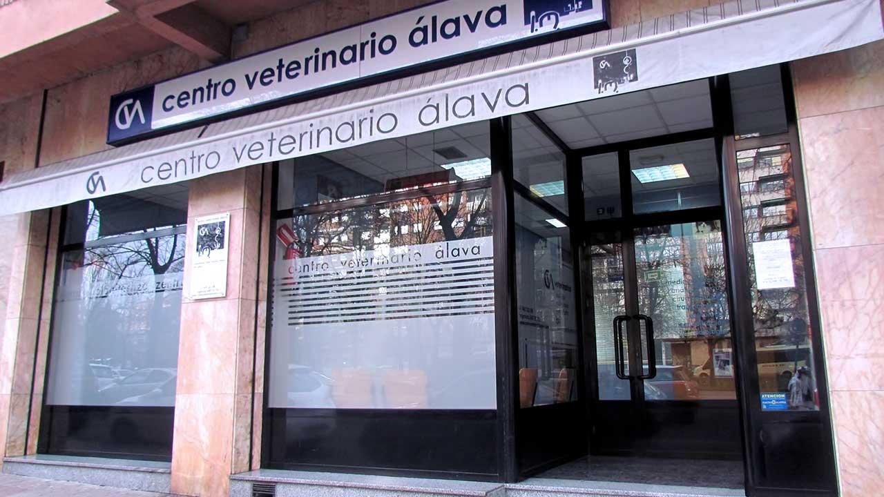 Clinicas Veterinarias Alava Alava